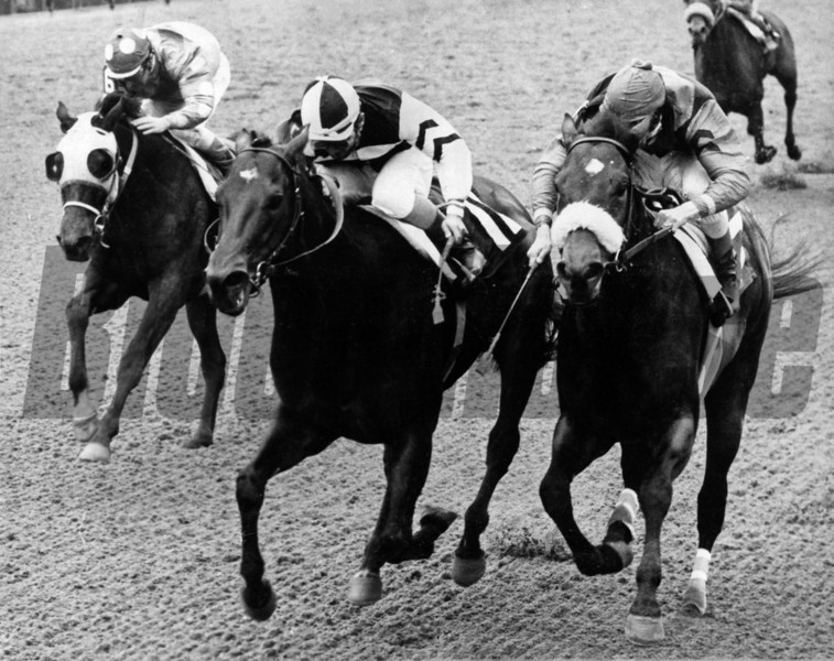 Foolish Pleasure and jockey Jacinto Vasquez win the 1975 Wood Memorial at Aqueduct.<br /> Photo by: Bob Coglianese