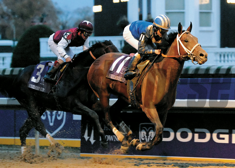 Invasor wins the 2006 Breeders' Cup Classic beating favorite Bernardini. Fernando Jara was the winning jockey.<br /> PHOTO BY ALEXANDER BARKOFF