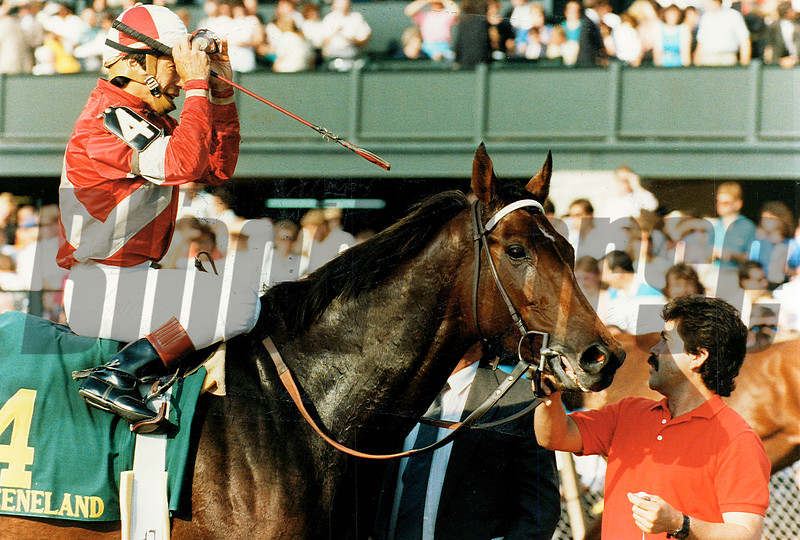 Bayakoa,wins the 1989 Spinster Stakes at Keeneland<br /> Anne M. Eberhardt Photo