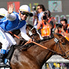 Goldikova wins the 2009 Breeders' Cup Mile<br /> Skip Dickstein Photo