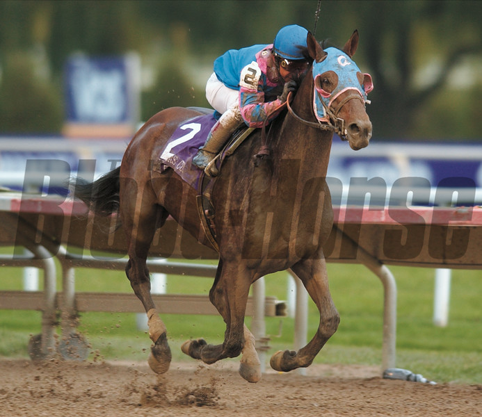 Photo by Skip Dickstein --  Volponi with Jose Santos wins the 19th running of the Breeders's Cup Classic.