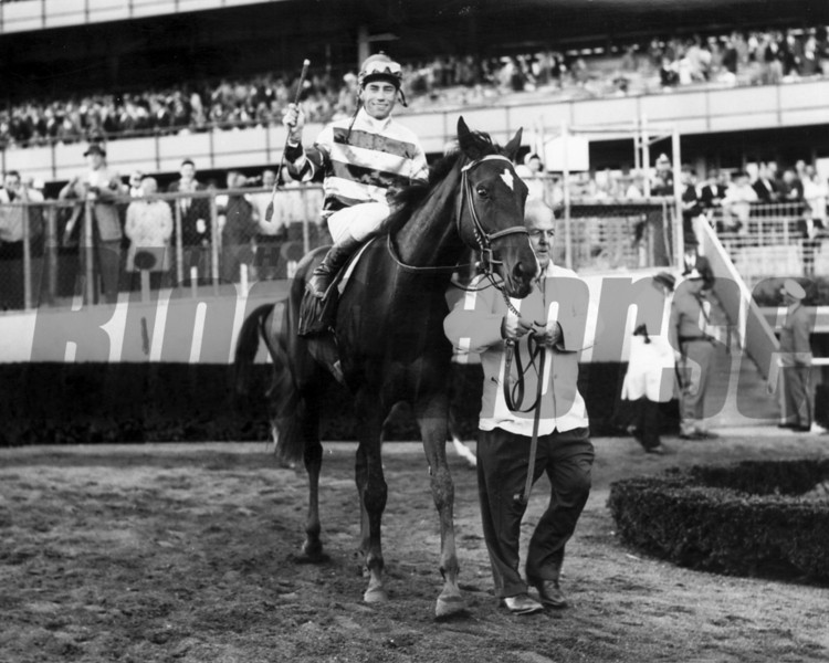 What A Treat with John Rotz up after winning the Beldame Handicap September 27, 1965 at Aqueduct<br /> Photo by Bob Coglianese