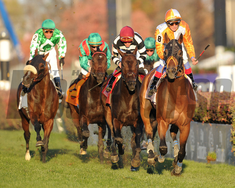 Dangerous Midge, Lafranc Dettori, up wins the  2010 Breeders Cup Turf  Churchill Downs; Louisville; KY; 11.6.10; Mathea Kelley