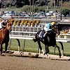 Smile wins the 1986 Breeders' Cup Sprint<br /> Skip Dickstein