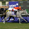 Caption: Tapitsfly with Robby Albarado wins the Breeders' Cup Juvenile Fillies Turf.<br /> Breeders' Cup Friday at Oak Tree/Santa Anita on Nov. 6, 2009, in Pasadena, California.<br /> Origs2  image449<br /> PHoto by Anne M. Eberhardt