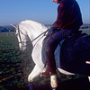 Henry Cecil on his hack on Warren Hill. February 2000<br /> Sir Henry Cecil<br /> Trevor Jones Photo