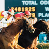 Da Hoss wins the 1998 Breeders' Cup Mile over Hawksley Hill.<br /> Skip Dickstein Photo