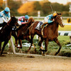 Unbridled wins the 1990 Breeders' Cup Classic<br /> Photo by: Skip Dickstein