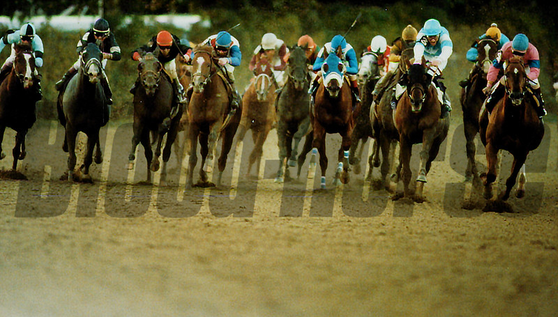 Unbridled, 1990 Breeders' Cup Classic<br /> Anne M. Eberhardt Photo