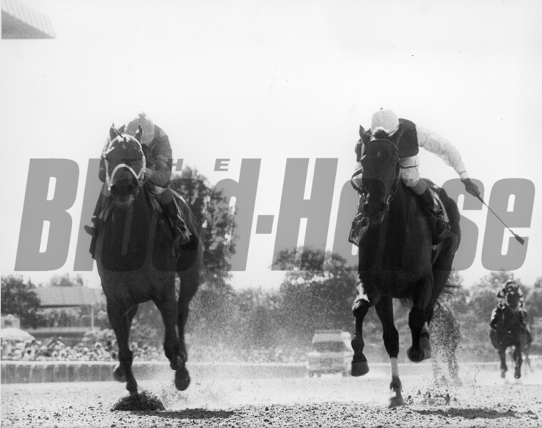 Open Mind wins the Mother Goose Stakes at Belmont Park.