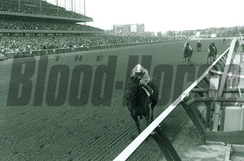 Damascus (Bill Shoemaker up) is 10 lengths ahead of Buckpasser (left) and Dr. Fager in winning the Woodward Stakes 9-30-67 at Aqueduct.<br /> NYRA/Bob Coglianese Photo