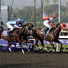 Caption: <br /> Furthest Land with Julien Leparoux wins the Breeders' Cup Dirt Mile.<br /> Breeders' Cup Saturda at Oak Tree/Santa Anita on Nov. 7, 2009, in Pasadena, California.<br /> Origs2  image050<br /> PHoto by Anne M. Eberhardt