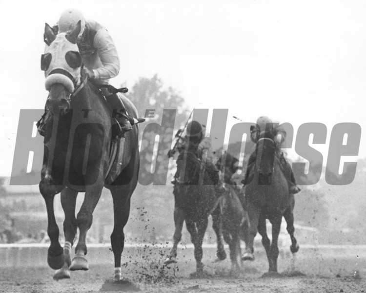 Winter's Tale with Jeffrey Fell up winning the 1983 Suburban Handicap<br /> Photo by Bob Coglianese