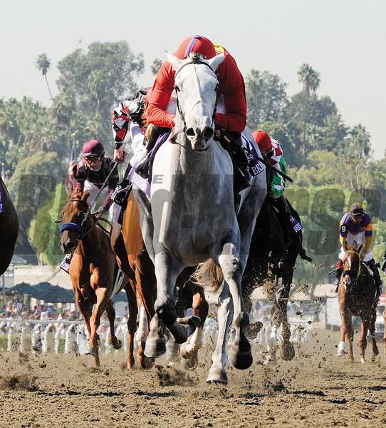 Mike Smith rides Stardom Bound to the win in the Bessemer Trust  Breeders' Cup Juvenile Fillies at Santa Anita October 24, 2008.  Photo by Skip Dickstein