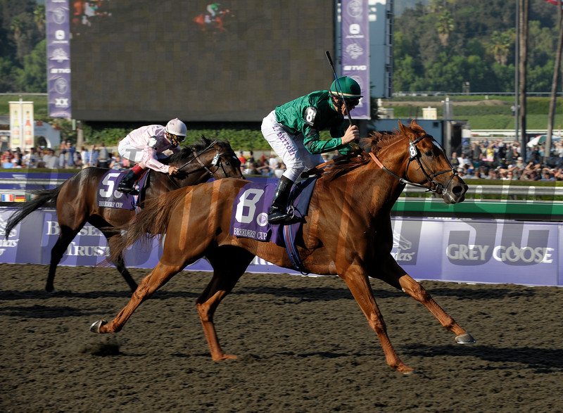 Caption:<br /> Raven's Pass with Frankie Dettori wins the Breeders' Cup Classic (gr. I) on October 25, 2008, at Santa Anita in Arcadia, California.<br /> Race9Classic image4779<br /> Poto by Anne M. Eberhardt
