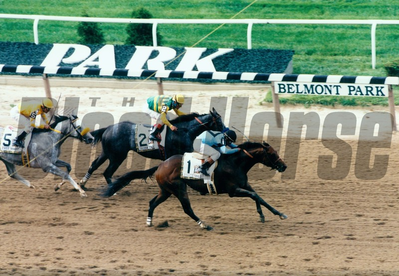 Touch Gold defeats Silver Charm in the 1997 Belmont Stakes at Belmont Park.<br /> Photo by: Rick Samuels