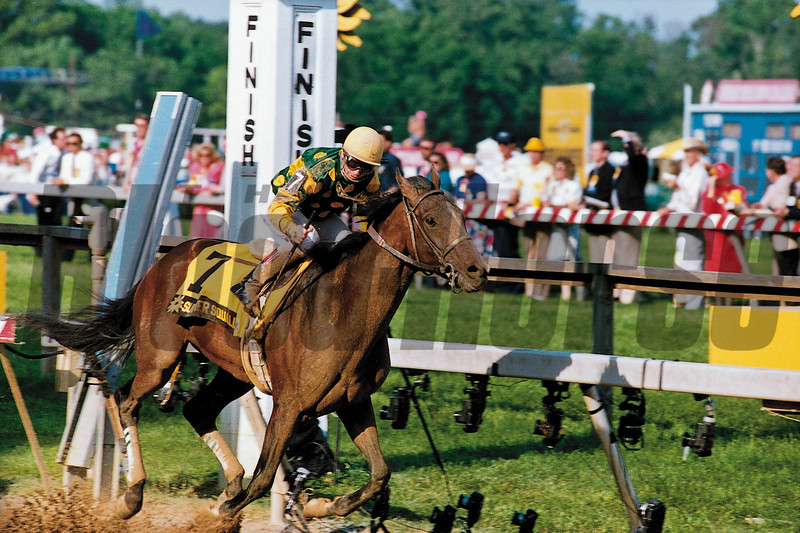 Summer Squall wins the 1990 Preakness Stakes<br /> Skip Dickstein Photo