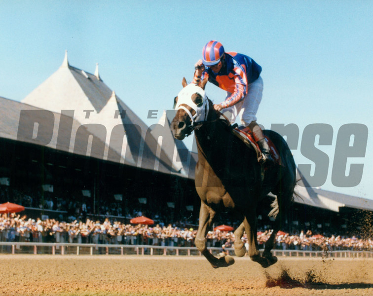 Thunder Gulch wins the 1995 Travers Stakes at Saratoga.<br /> Photo by: Skip Dickstein