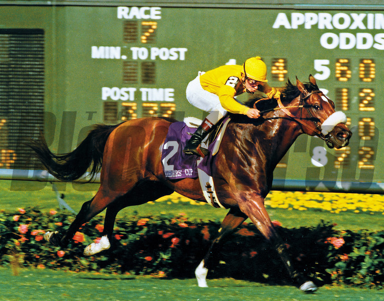 Lure 1992 - Breeders' Cup Memories