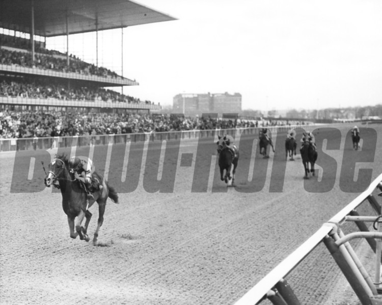 What A Treat with John Rotz up winning the 1965 Prioress at Aqueduct April 7<br /> Photo by Bob Coglianese