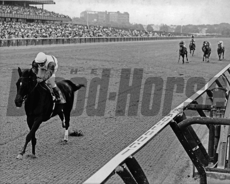 Ruffian and jockey Jacinto Vasquez wins the 1975 Mother Goose Stakes at Aqueduct.<br /> Photo by: Bob Coglianese