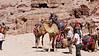 Petra - -1020197