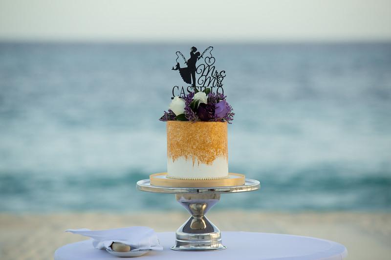 Cabo_beach_wedding_LeblanC_Los_Cabos_K&n-137