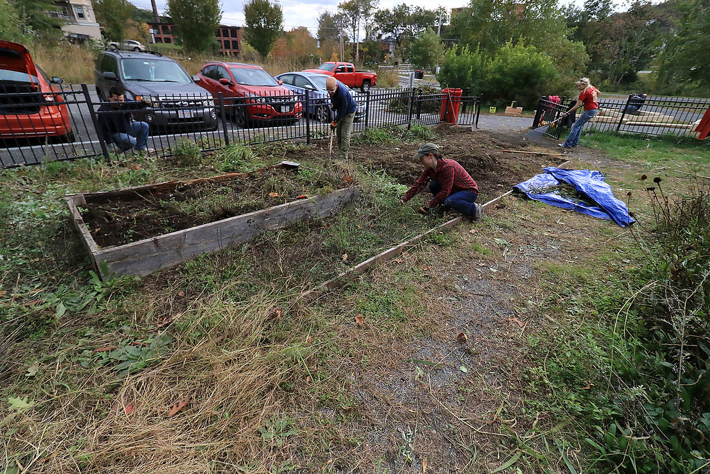 . Gardeners & volunteers cleaned up the Gateway Park Community Gardens in Fitchburg on Saturday, October 20, 2018. They pulled weeds racked the area and fixed the walkway. they also had new wood to build new garden beds. The wood was gotten through the Gateway Park fund and with some help from Growing Places. SENTINEL & ENTERPRISE/JOHN LOVE