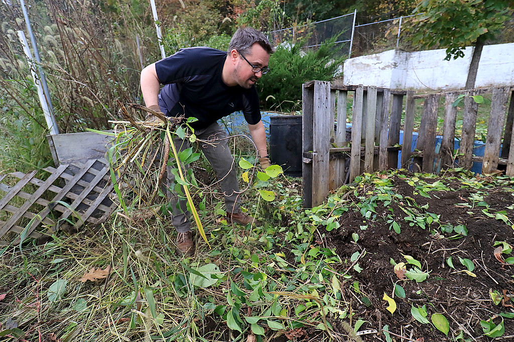 . Gardeners & volunteers cleaned up the Gateway Park Community Gardens in Fitchburg on Saturday, October 20, 2018. They pulled weeds racked the area and fixed the walkway. they also had new wood to build new garden beds. The wood was gotten through the Gateway Park fund and with some help from Growing Places.The gardens Manager Josiah Richards pulls weeds as he works on fixing up the garden. SENTINEL & ENTERPRISE/JOHN LOVE