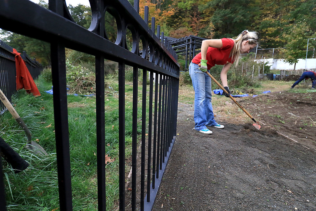 . Gardeners & volunteers cleaned up the Gateway Park Community Gardens in Fitchburg on Saturday, October 20, 2018. They pulled weeds racked the area and fixed the walkway. they also had new wood to build new garden beds. The wood was gotten through the Gateway Park fund and with some help from Growing Places.Volunteer and City Councilor Sam Squailia works on fixing the walkway in the garden. SENTINEL & ENTERPRISE/JOHN LOVE