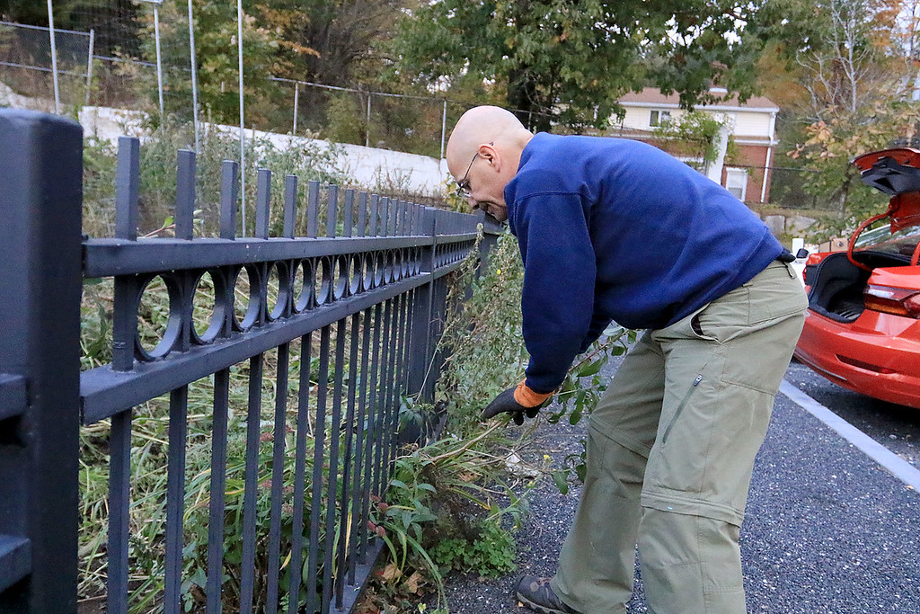. Gardeners & volunteers cleaned up the Gateway Park Community Gardens in Fitchburg on Saturday, October 20, 2018. They pulled weeds racked the area and fixed the walkway. they also had new wood to build new garden beds. The wood was gotten through the Gateway Park fund and with some help from Growing Places. Helping with the cleanup was volunteer Chris Benoit. SENTINEL & ENTERPRISE/JOHN LOVE