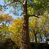 2260 oak at bear town rocks ncw