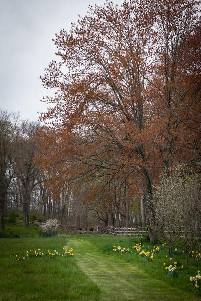 April_Landscaping00004