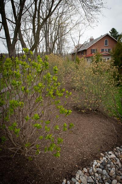 April_Landscaping00010