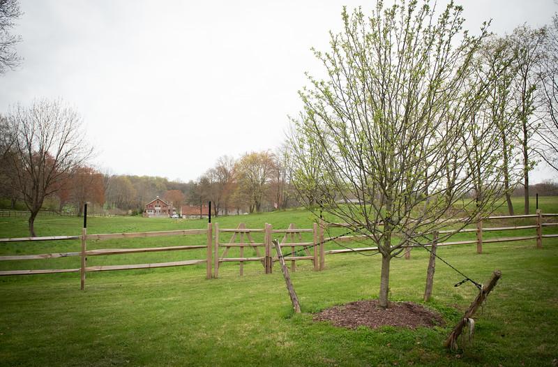 April_Landscaping00016