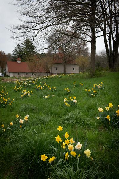 April_Landscaping00009