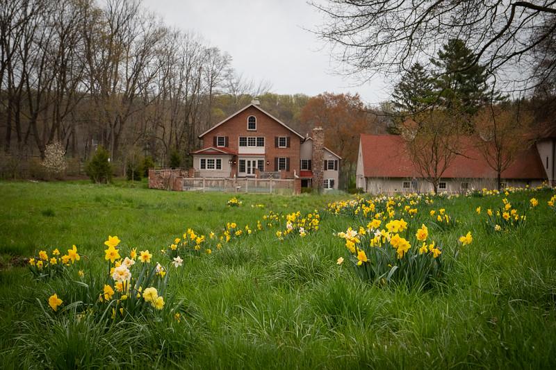 April_Landscaping00008