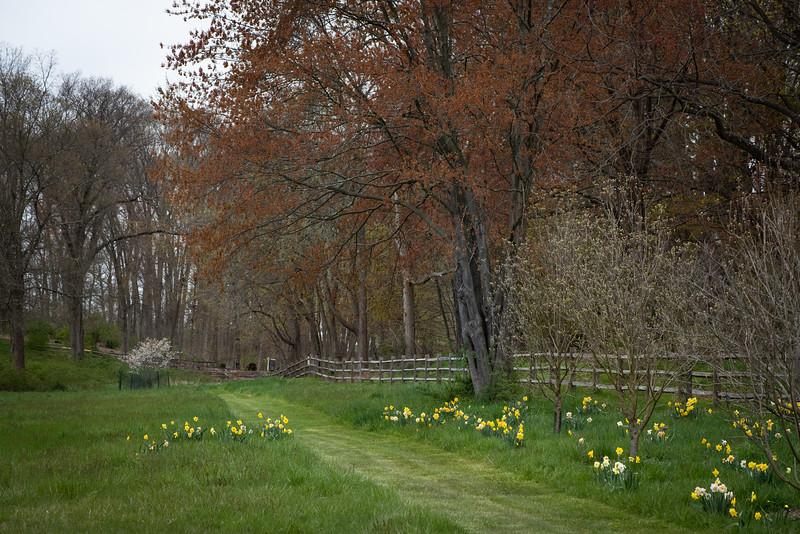 April_Landscaping00005