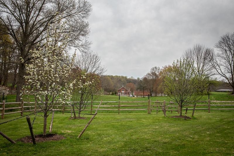 April_Landscaping00019
