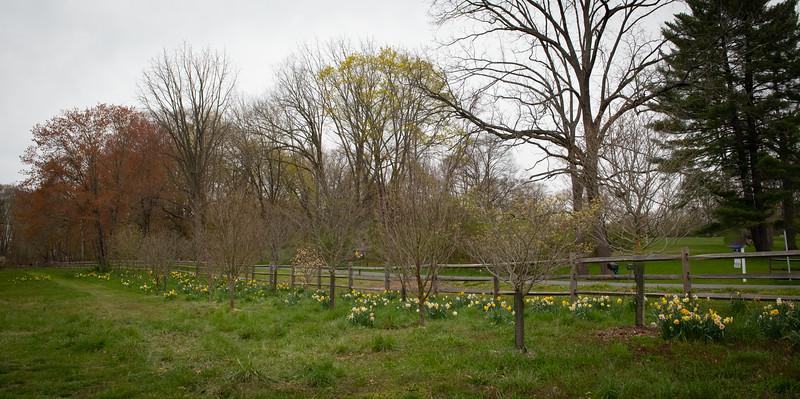 April_Landscaping00001