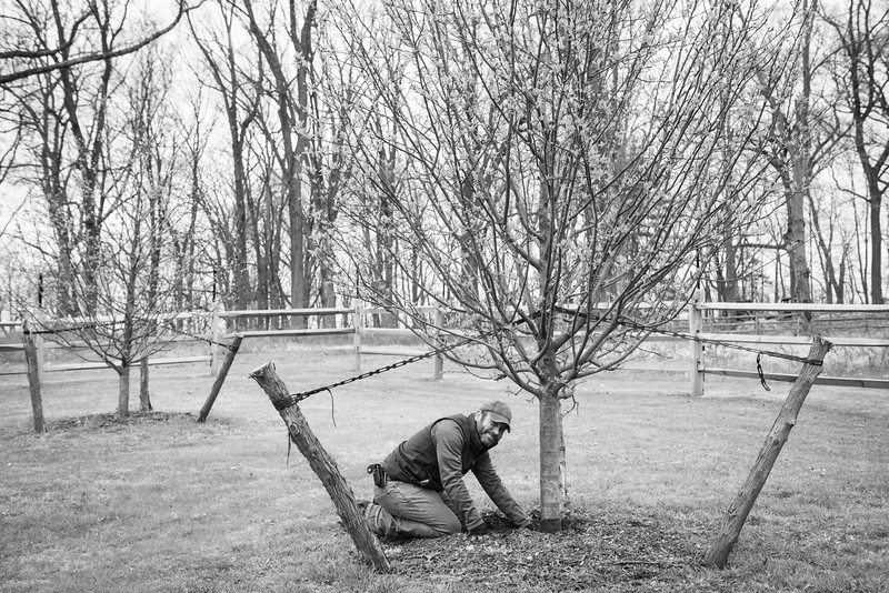 April_Landscaping00018