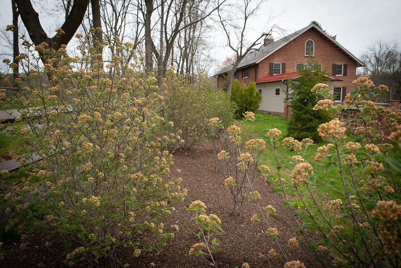 April_Landscaping00011