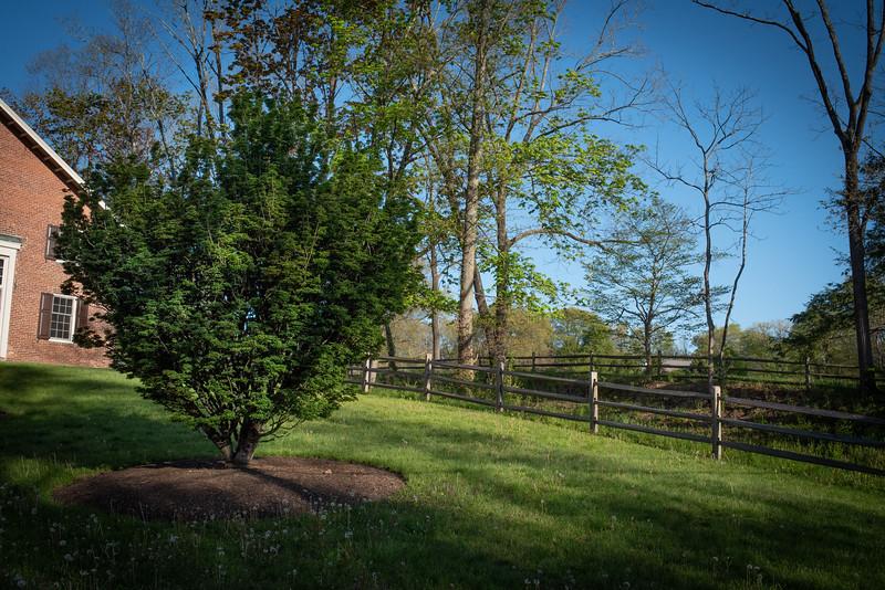 May2020_Landscaping00006