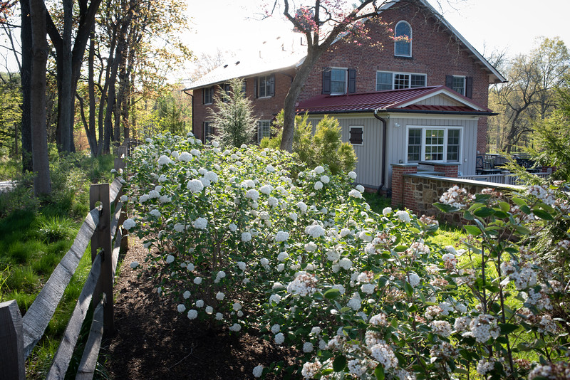 May2020_Landscaping00035