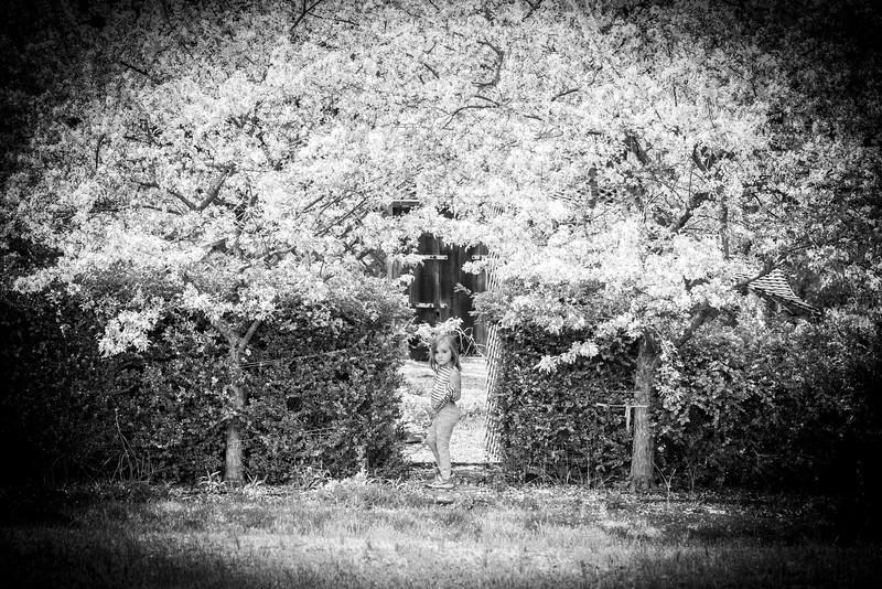 May2020_Landscaping00001