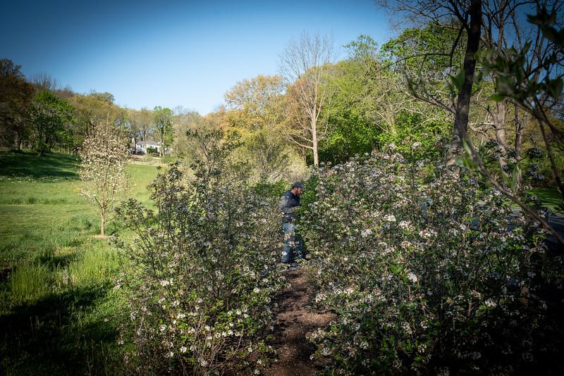 May2020_Landscaping00034