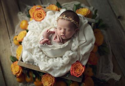 clementine newborn