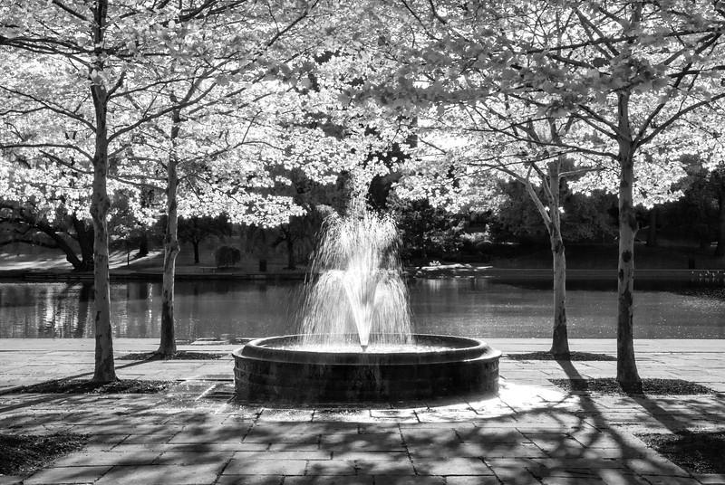 Wade Lagoon Fountain #2