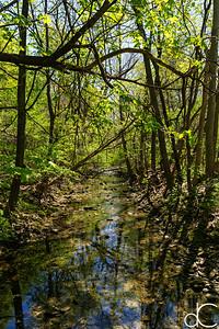 Dugway Brook, April 2017.