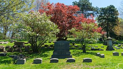 Lake View Cemetery, April 2017.